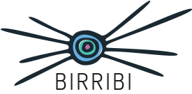 birribi therapeautic homes for children and young people logo